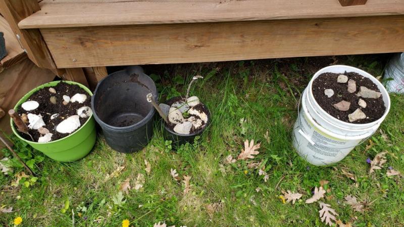 13-1_Extra Pots.jpg