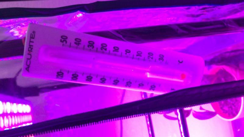 23E9293C-0CD0-4C17-8AB8-8DA55E6C43ED.jpeg